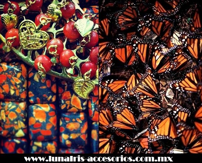Mariposa monarca, ícono de inspiración